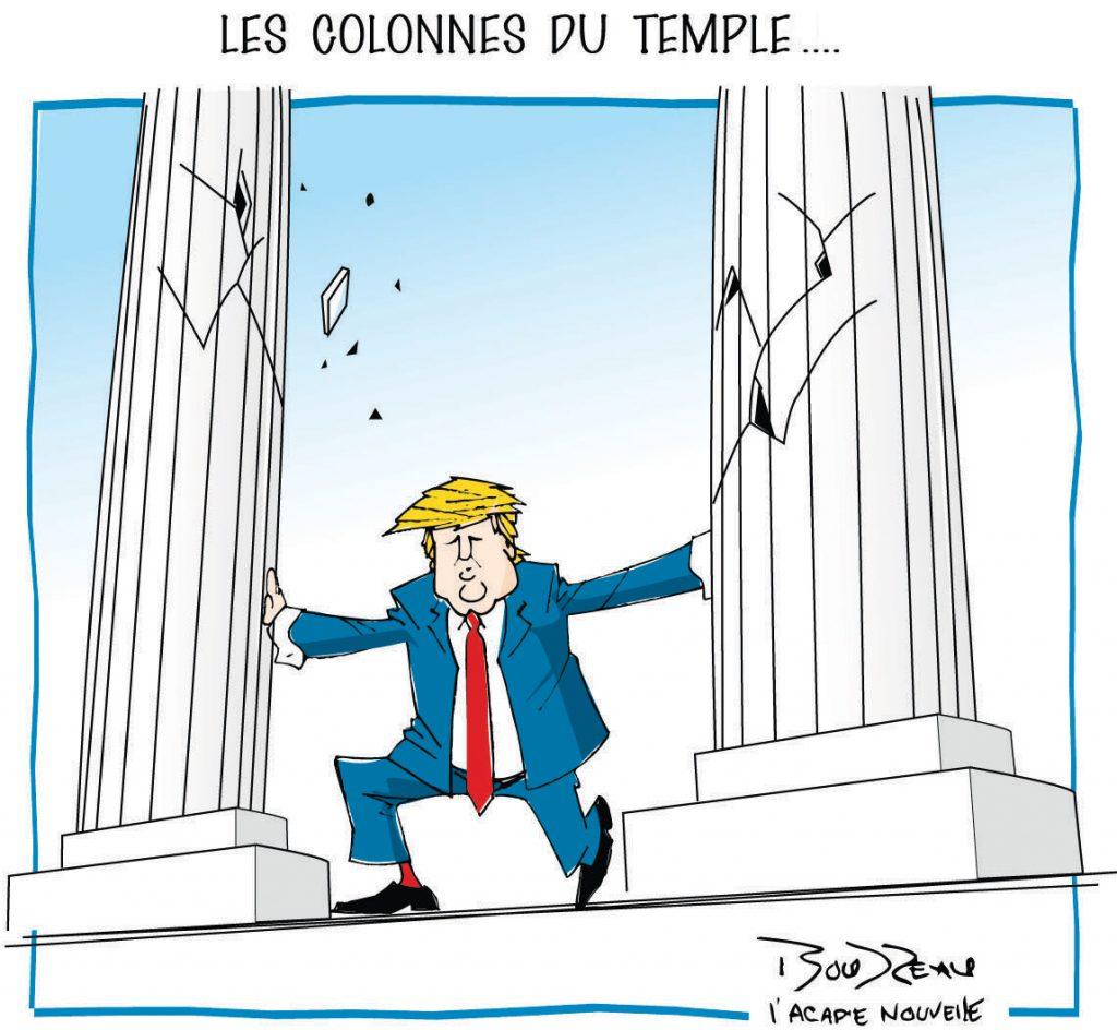 12_colonnes