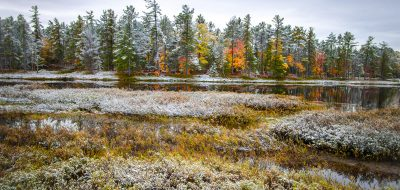 First Snow On Autumn Forest Landscape In Tahquamenon Falls State Park In Michigan